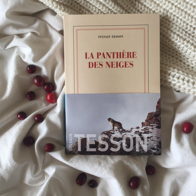 livres-a-lire-confinement-la-panthere-des-neiges-sylvain-tesson